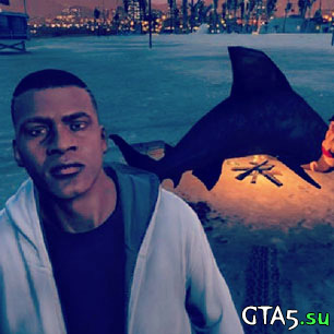 Жареная акула