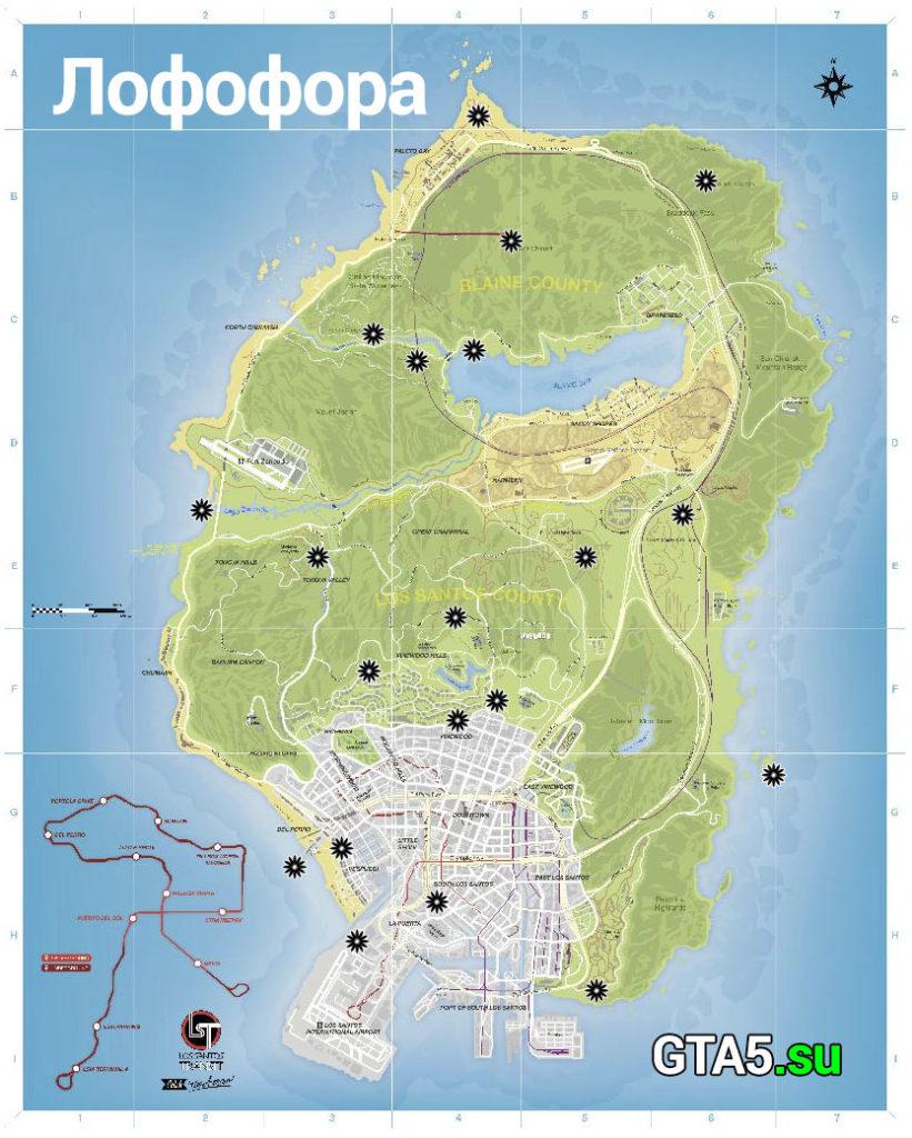 Лофофора на карте
