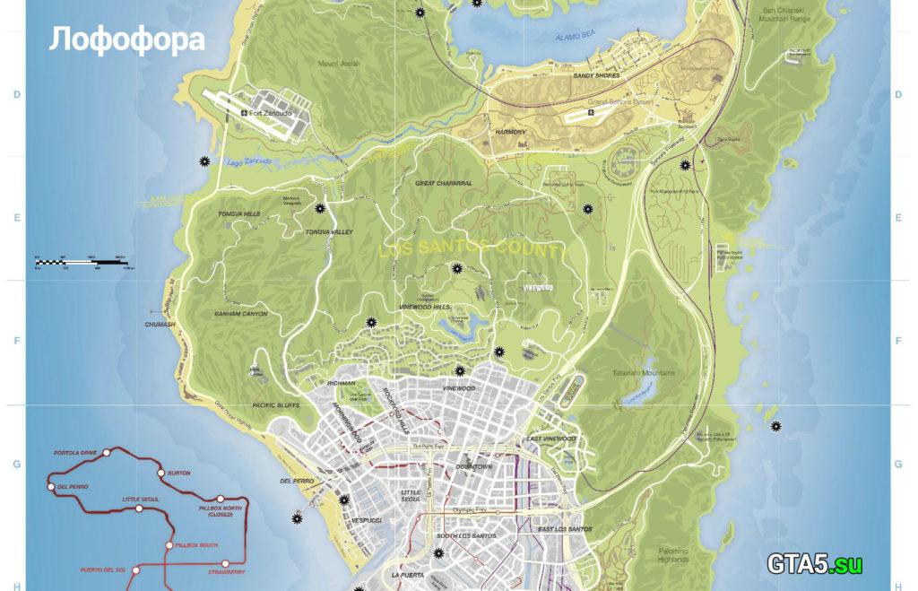 Середина карты лофофор