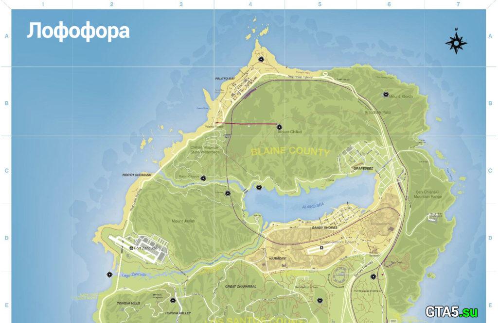 Лофофоры сверху карты